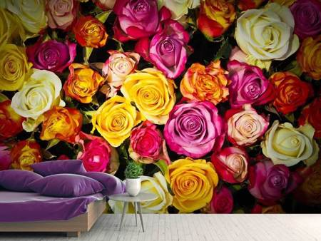 Photo Wallpaper Many colorful rose petals
