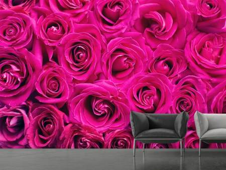 Photo Wallpaper Rose petals in pink