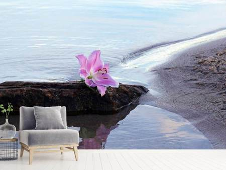 Photo Wallpaper The lily and the sea
