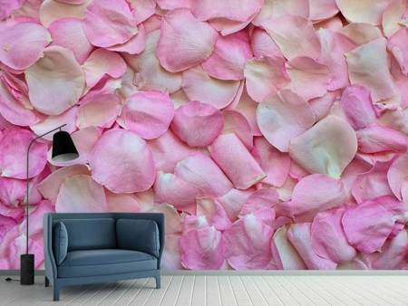Photo Wallpaper Rose petals in pink 2