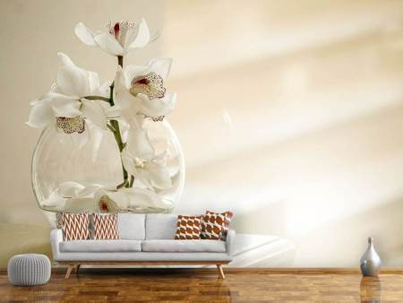 Photo Wallpaper Orchid in the glass