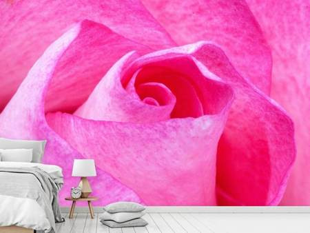 Photo Wallpaper Painting of the rose