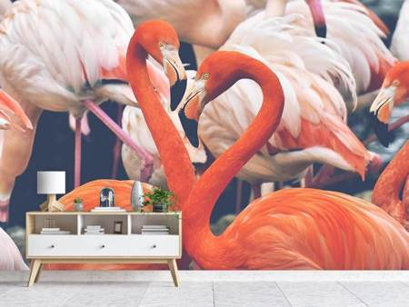 Photo Wallpaper Colorful flamingos