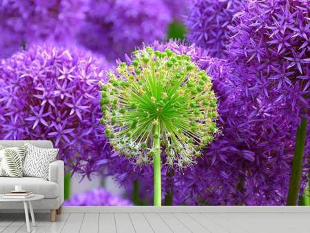 Photo Wallpaper Purple flowers XL