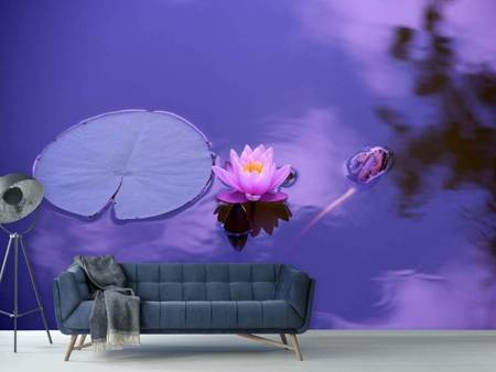 Photo Wallpaper Lotus flower