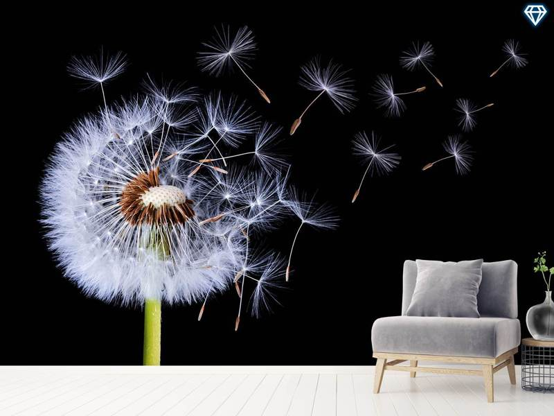 Papier peint photo Dandelion Blowing