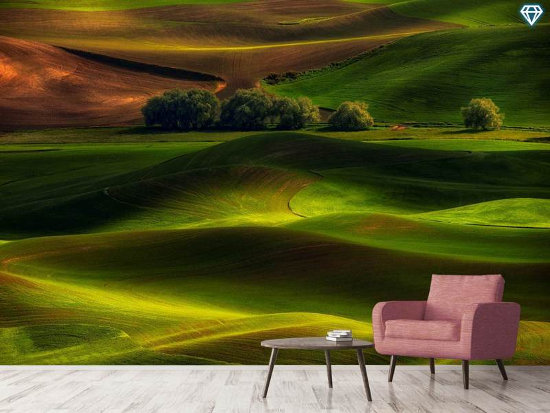 Photo Wallpaper Spring In The Palouse