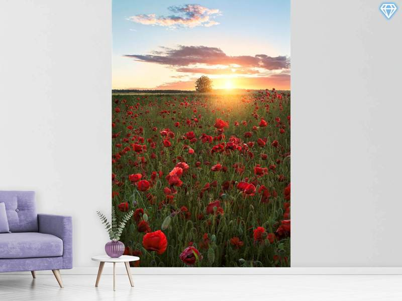 Photo Wallpaper Poppy Fields Of Sweden