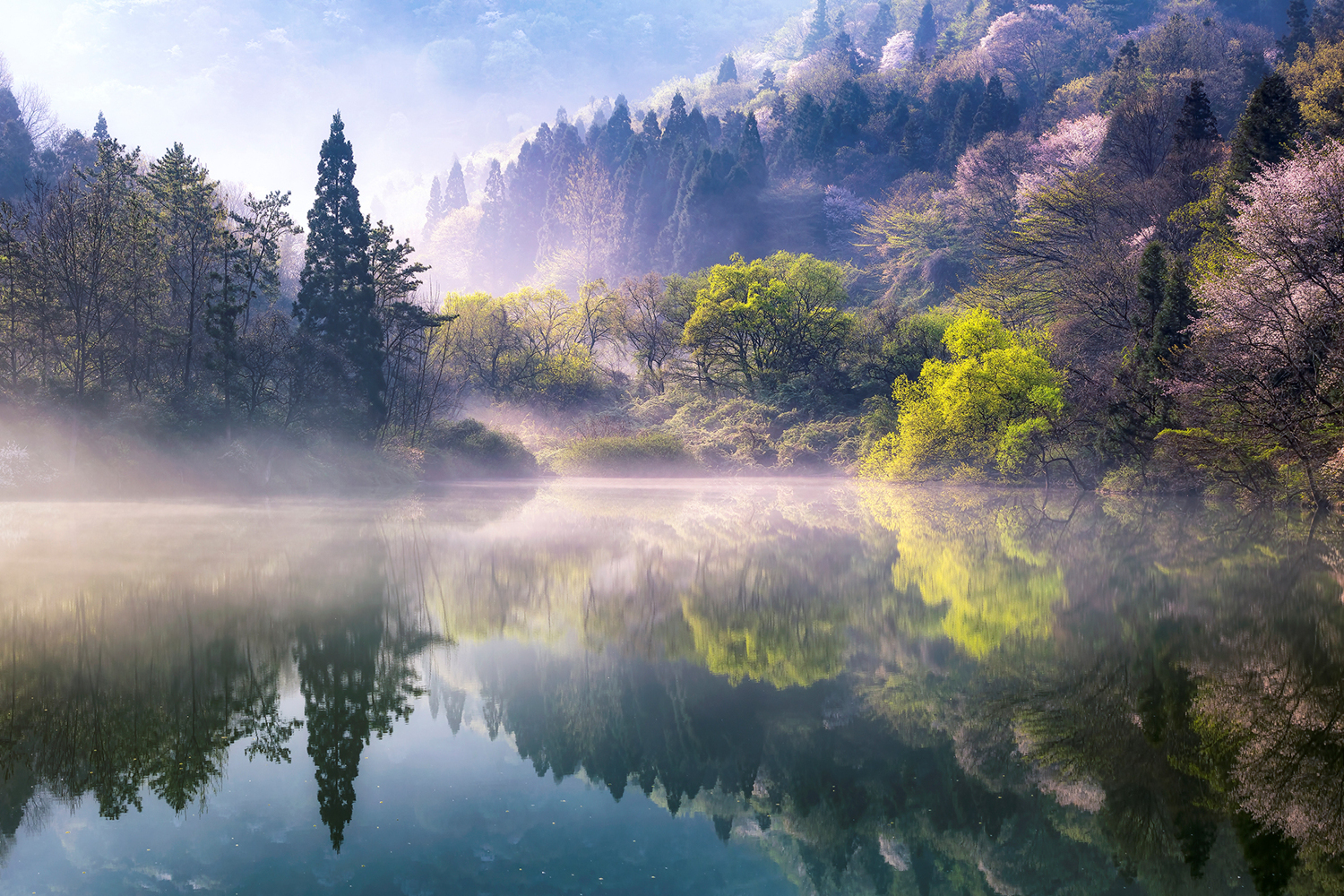 Photo Wallpaper Morning Calm