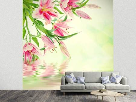 Photo Wallpaper Lilies On Water