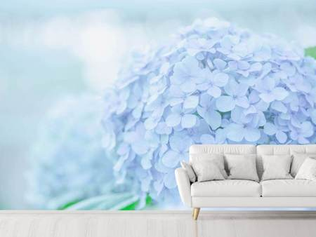 Photo Wallpaper The Hydrangea