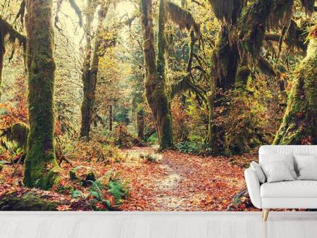 Photo Wallpaper Fairies Forest