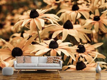 Photo Wallpaper Daisies In Sepia